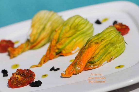 Fleurs de courgettes farcies la ricotta - Cuisiner les fleurs de courgette ...