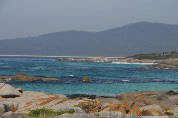 Tasmanie (17)