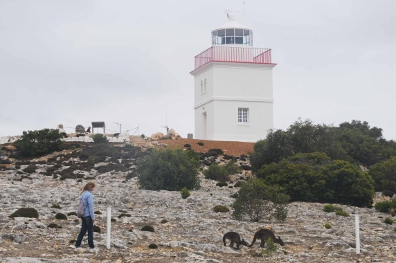 Kangaroo Island (24)