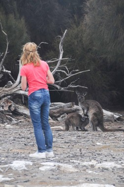 Kangaroo Island (25)