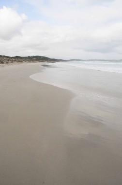 Kangaroo Island (27)
