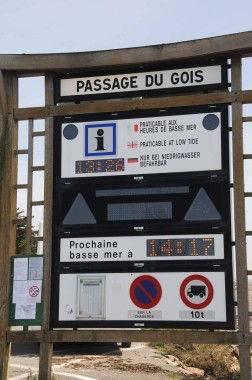Noirmoutier (4)