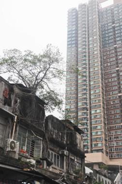 Hong Kong (63)