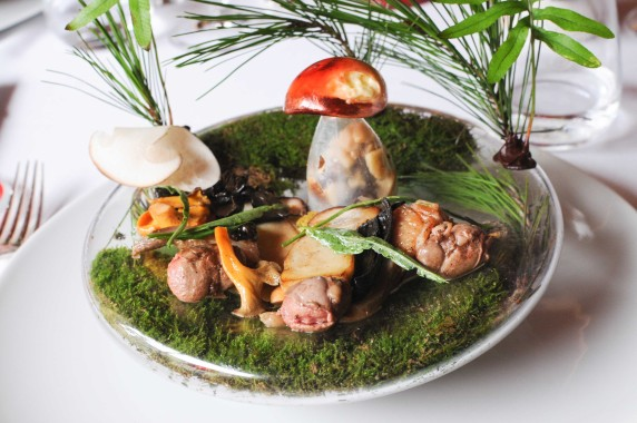 Gilles Goujon - auberge de Fontjoncouse -salade de champignons