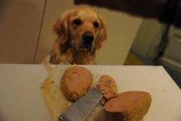 foie gras sous vide basse temprature