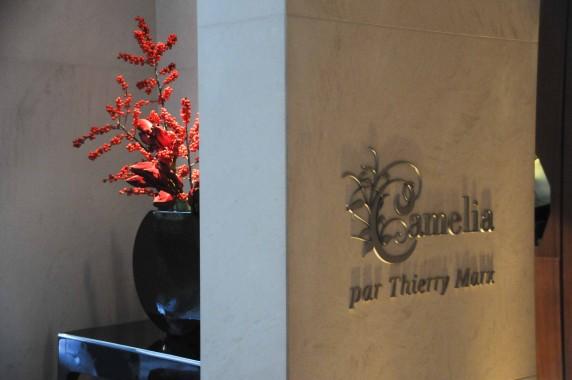 restaurant Camélia Mandarin Oriental Paris (3)