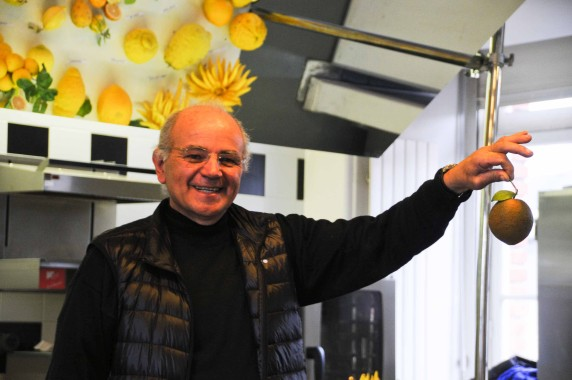 Agrumes Bachès, Ferrandi (46)
