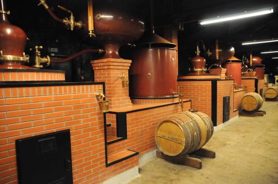 Hennessy Cognac (4)