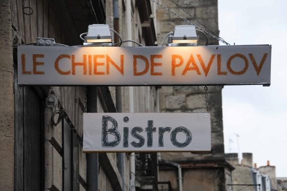 Le Chien de Pavlov Bordeaux (1)