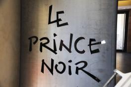 Prince Noir Vivien Durand (36)