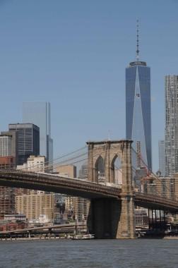 New York (99)