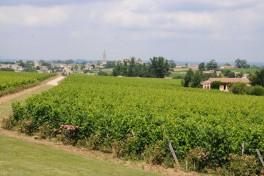 Chateau Troplong Mondot (26)