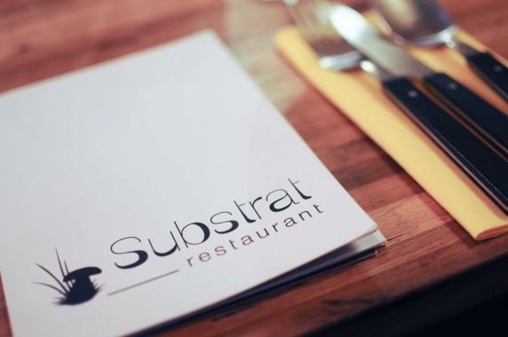 restaurant Substrat Lyon (6)
