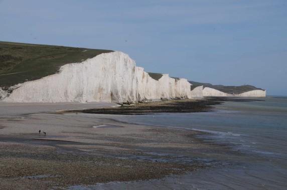 Brighton (33)