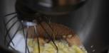 REcette Brownie Trish Deseine