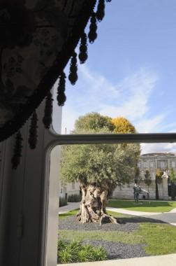 La Grande Maison Robuchon Bordeaux (41)