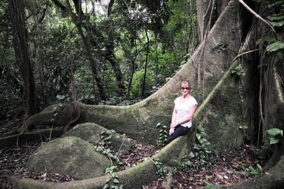 Habitation Céron Martinique (13)