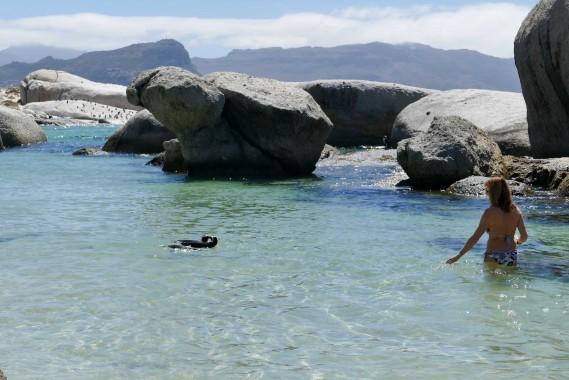 Le Cap, Capetown (20)