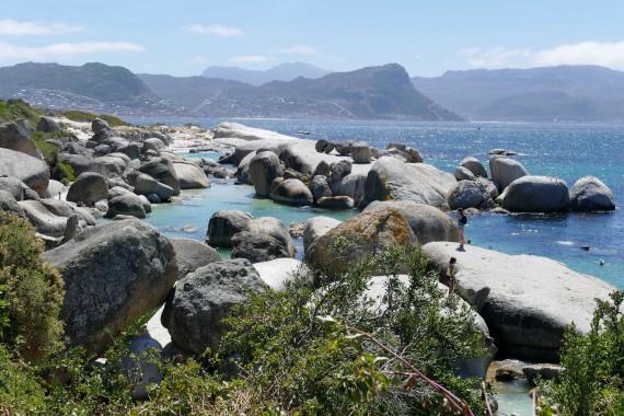Boulders Beach Le Cap, Capetown (24)