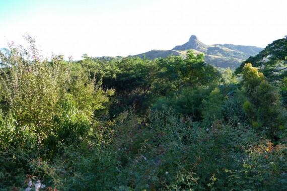 Swaziland (2)