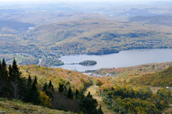 Quebec (95)