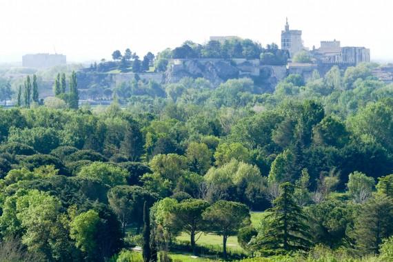 Abbaye Saint-André Villeneuve les Avignon (2)