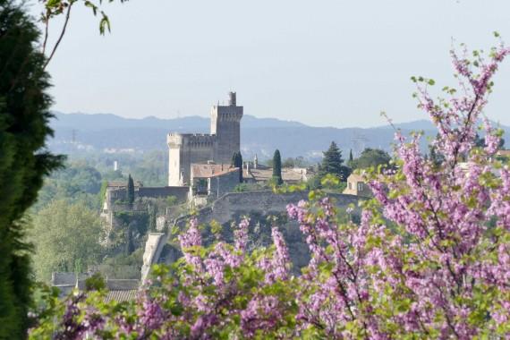 Abbaye Saint-André Villeneuve les Avignon (6)