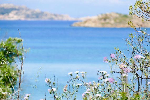 Ile Caprera - Maddalena