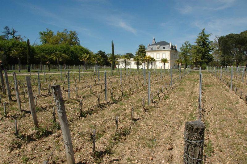 Le Château Méjean, grand vin de Graves, et un nouveau dîner à la Table de Montesquieu à La Brède