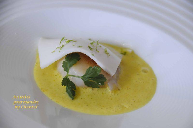 Saint-Jacques en curry et son voile coco