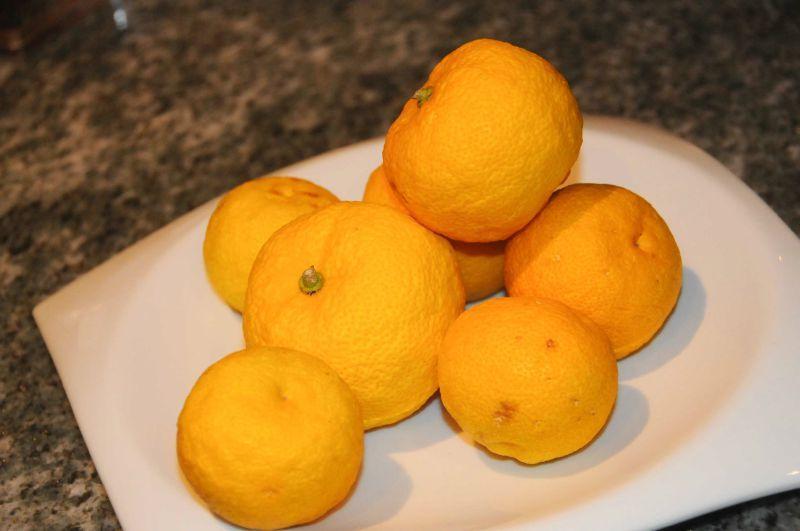 Yuzu: ce fruit introuvable qui parfume ma cuisine...