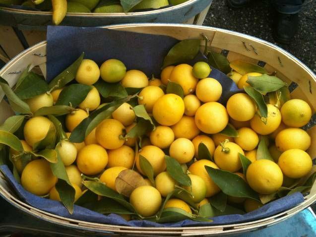 Limequat... encore un drôle d'agrume!