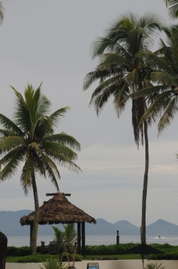 Fidji (8)