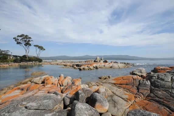 Tasmanie (10)