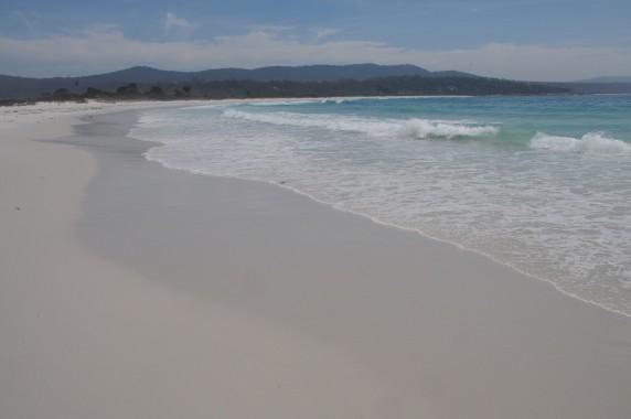 Tasmanie (14)