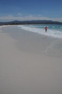 Tasmanie (15)