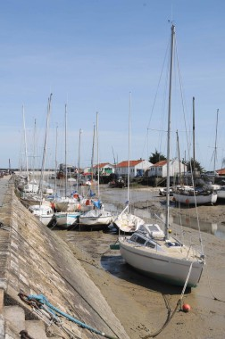 Noirmoutier (9)