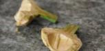 artichauts (6)