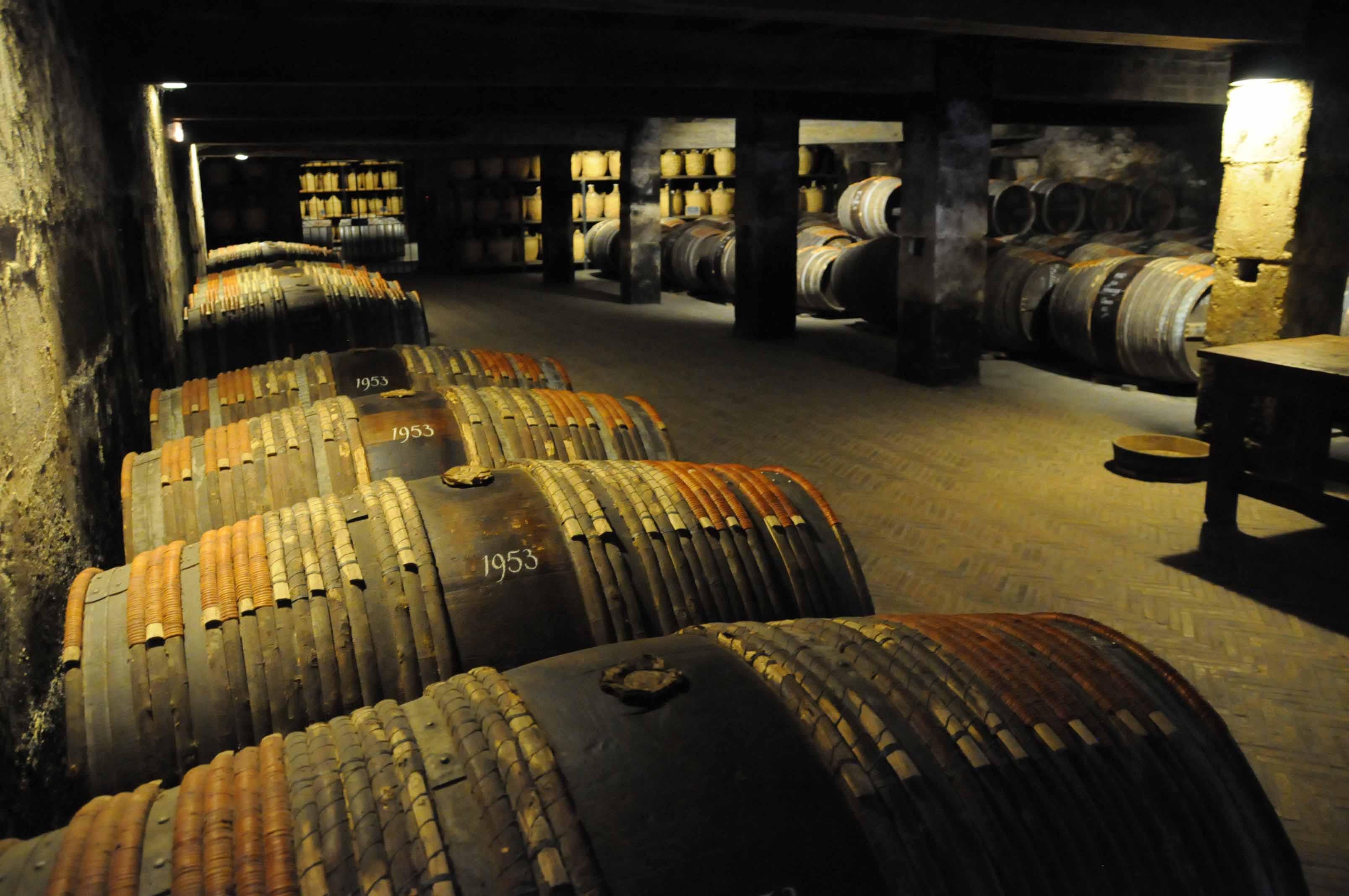 Quelle cave de cognac visite