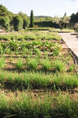 Jardin Potager Oustau de Baumanière