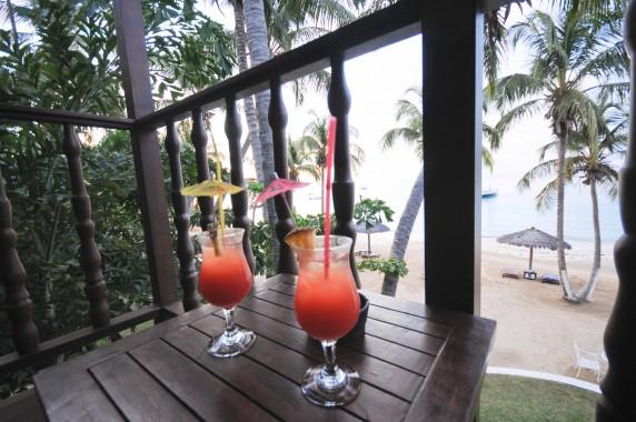 Iles Grenadines (3)