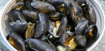 recette moules William Ledeuil (9)