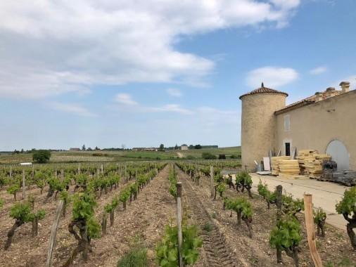Chateau Lafaurie Peyraguey (16)