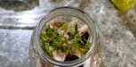 recette Tonno de Coniglio (11)