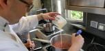 recette mousse fruits rouges (153)