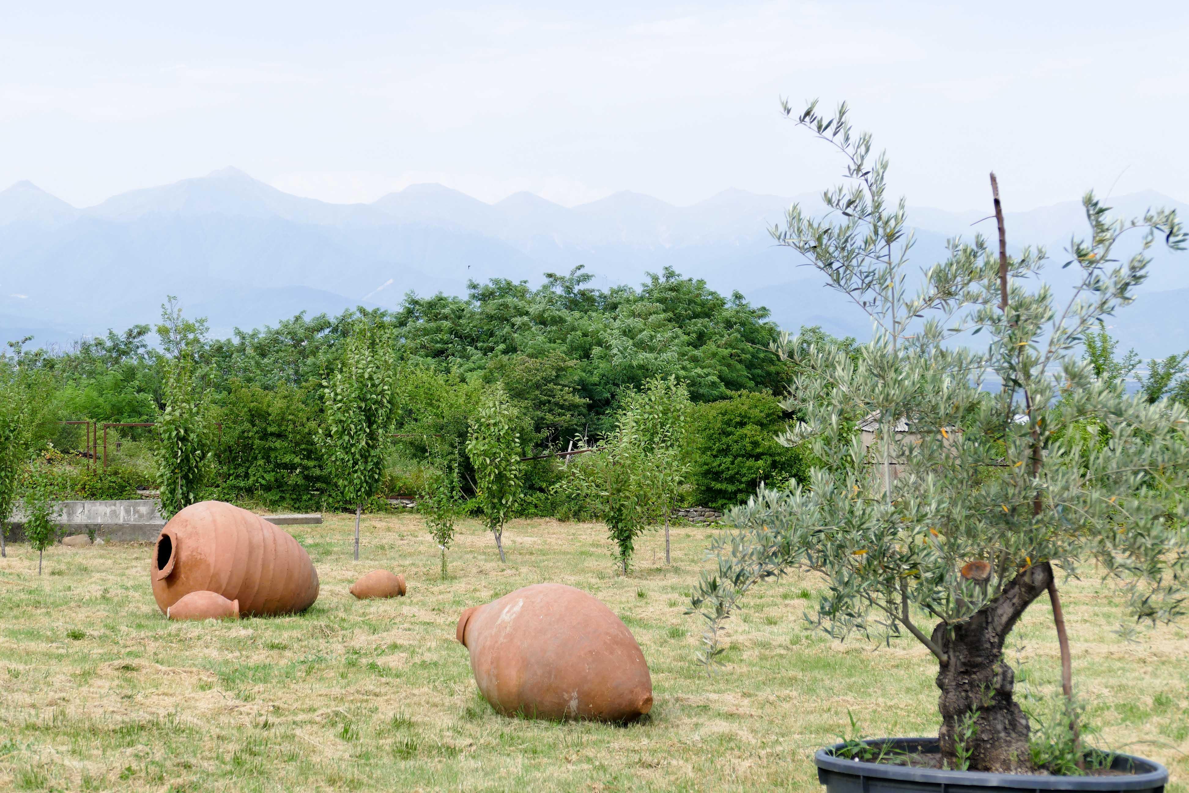 La Géorgie berceau de la viticulture