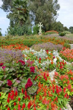 jardin botanique de Batoumi