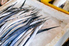 Marché aux poissons Batumi - Mer Noire