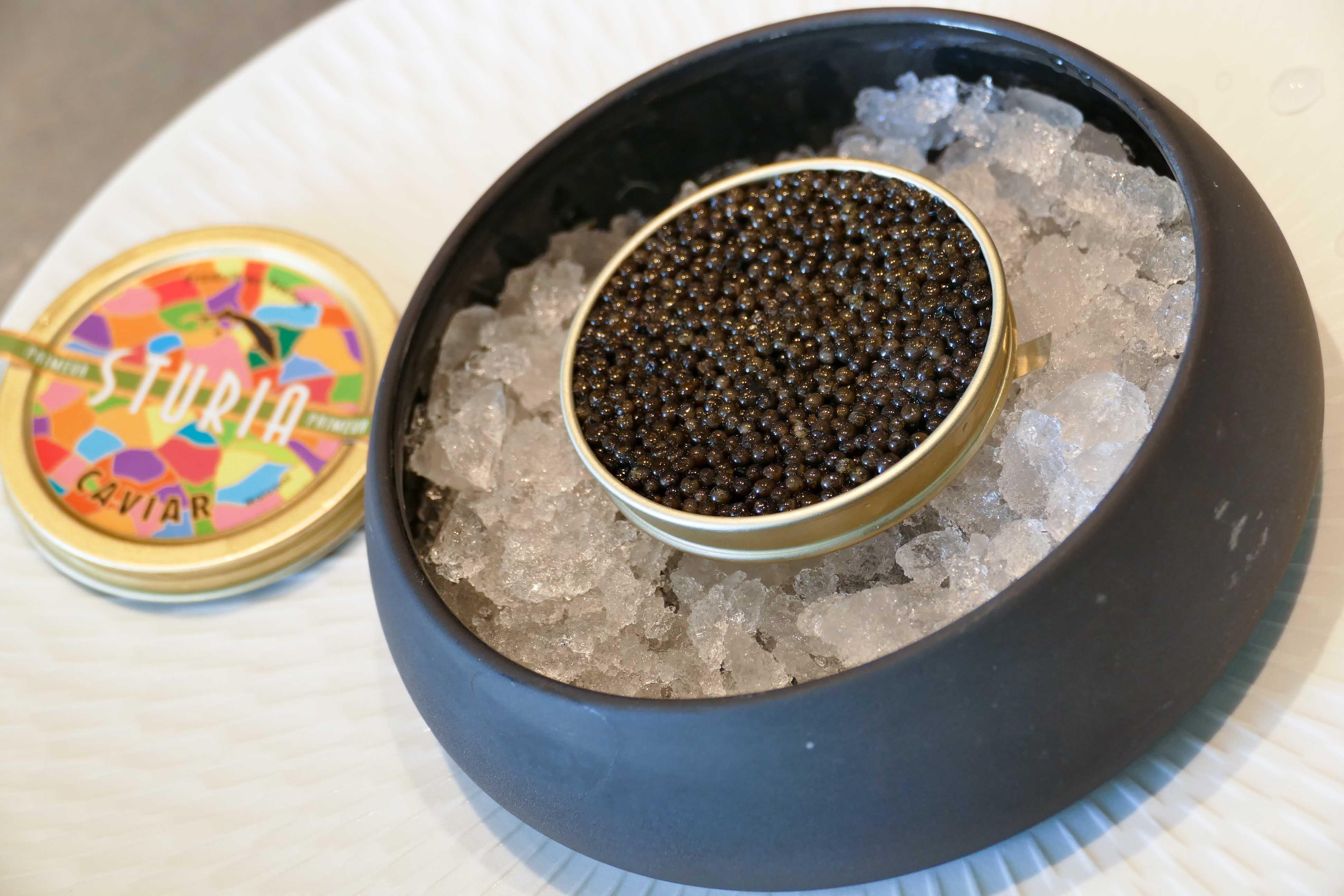 Sturia, leader du Caviar d'Aquitaine, toutes les étapes de la fabrication