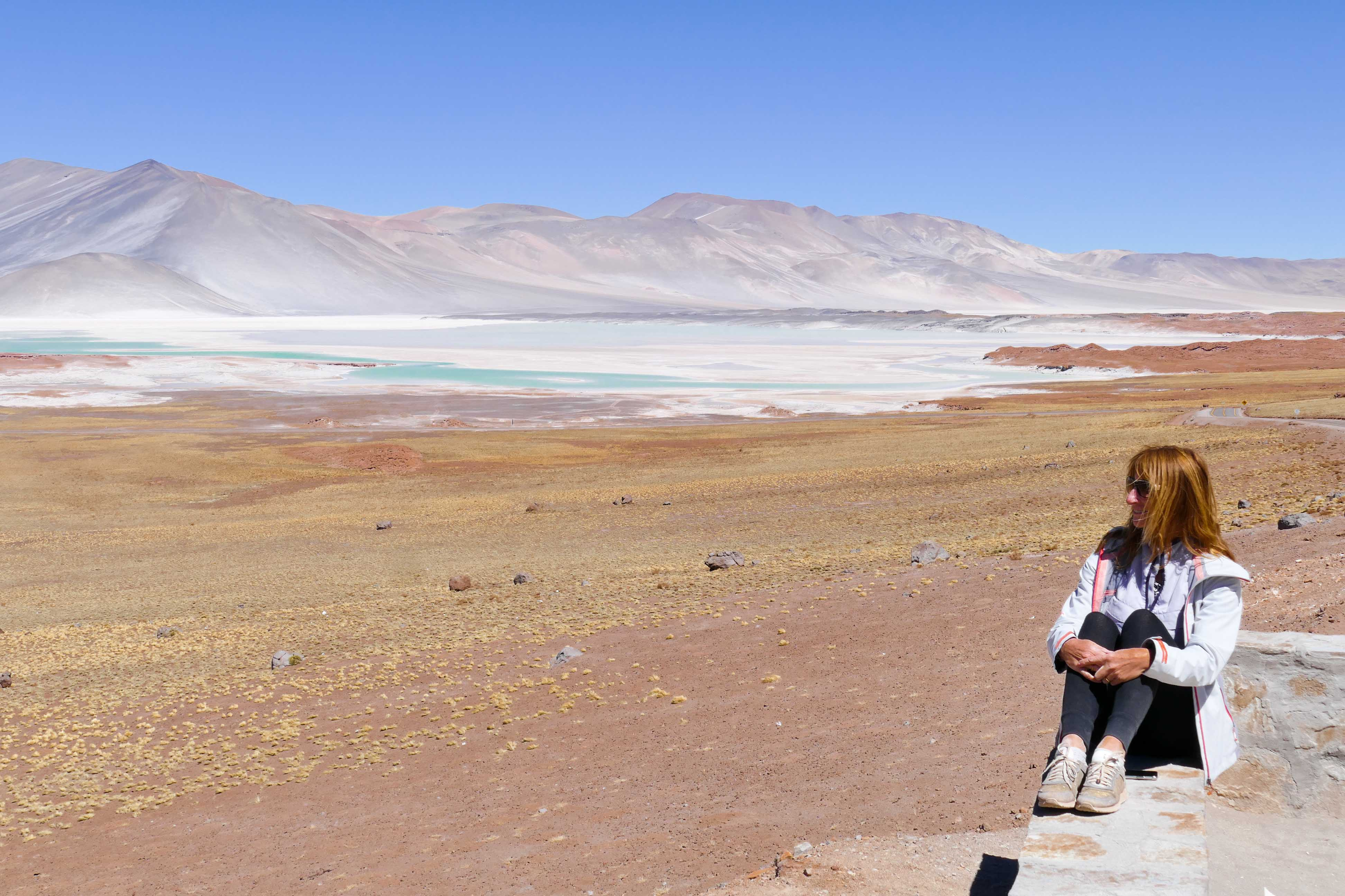 Désert d'Atacama - Lagunes du Salar et Geyser du Tatio